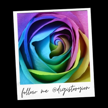 Rainbow rose on polaroid picture template with text follow me @digistoryion